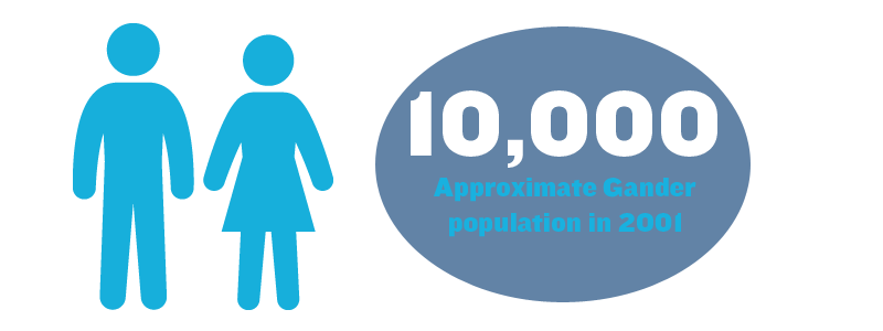 10,000 - Approximate Gander population in 2001